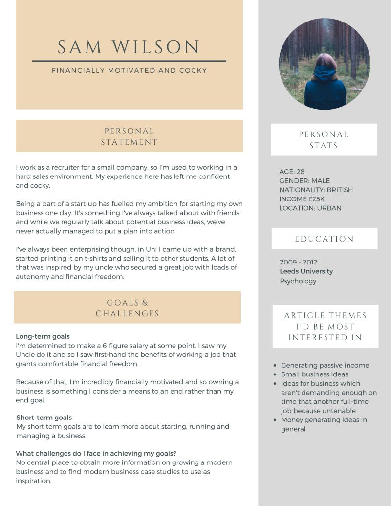 Sam Wilson Persona Profile